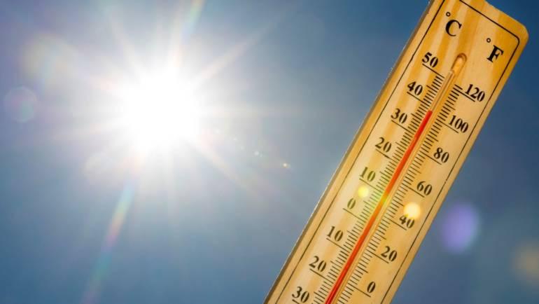 Quelques conseils en cette période de forte chaleur